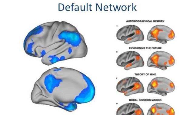 beszelgetes-agyi-reakciok